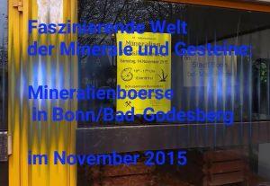 Angelika Albrecht - Titelbild vom Film über die Mineralienboerse in Bonn Bad-Godesberg
